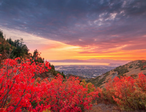 How to Enjoy Utah in the Fall